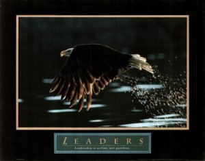 Leaders: Bald Eagle (available at Amazon)